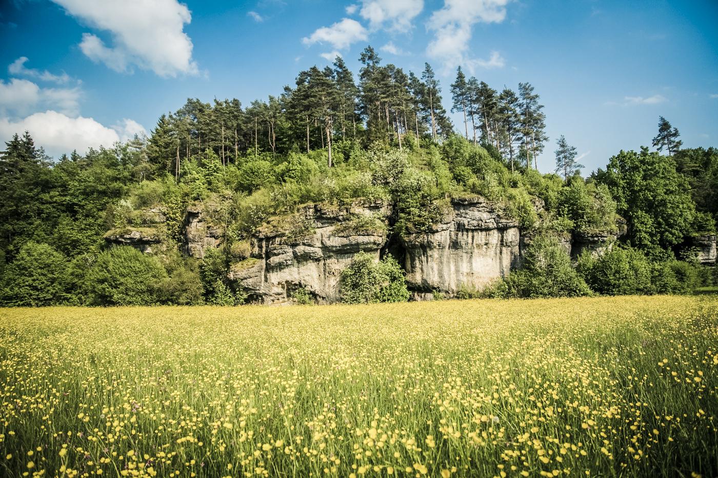 Felsen Fränkische Schweiz bei Sanspareil