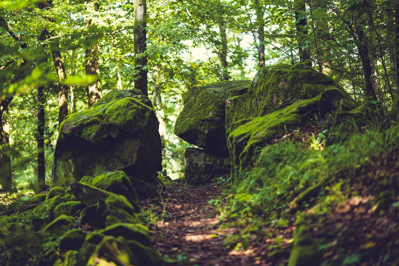 Wanderweg Bad Berneck